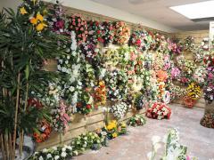 Producent en groothandel van kunstmatige bloemen en planten in de regio Charleroi te koop Provincie Namen