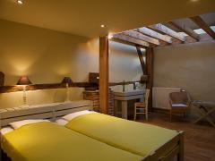 A vendre dans la région de Dinant maison de maître + grange aménagée en gite et chambres d'hôtes Province de Namur n°13